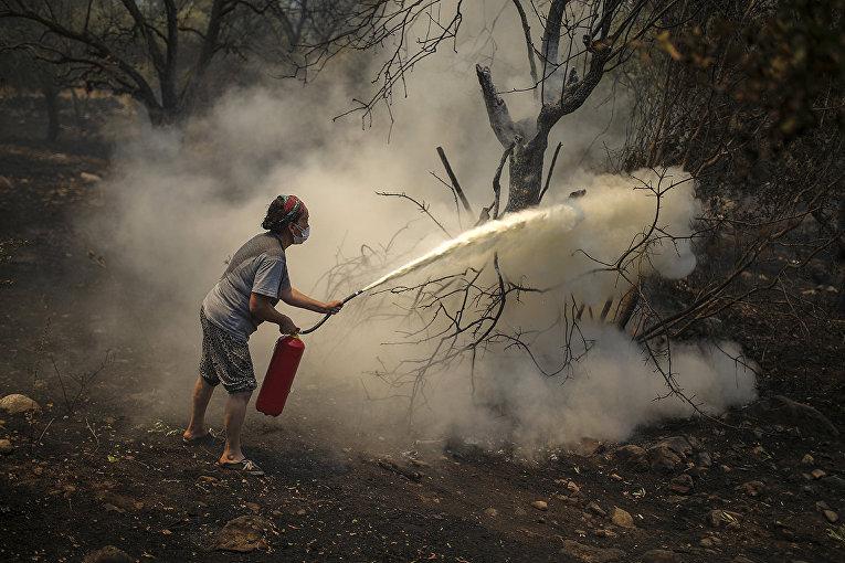 Турция. Женщина пытается спасти горящее дерево при помощи огнетушителя. Чокертме