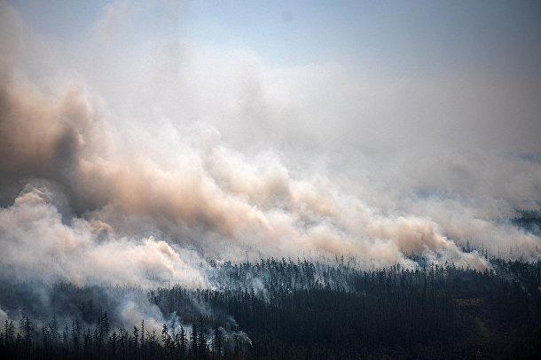 Россия. Дым от лесного пожара поднимается возле села Бердигестях