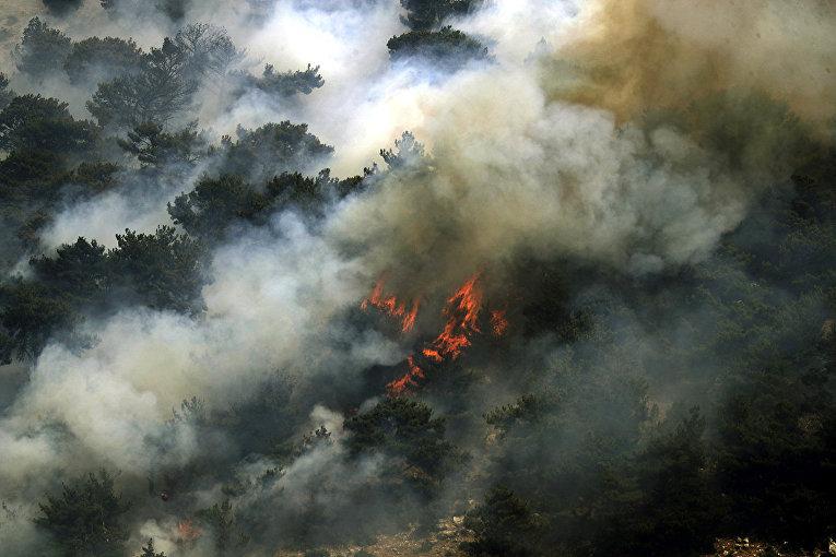 Ливан. Пожары охватили лесные массивы вблизи села Кубайят в провинции Аккар