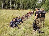 Польские пограничники задержали людей, пытавшихся незаконно пересечь границу