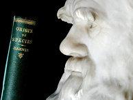 Бюст Чарлза Дарвина