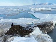 Исследователи собирают образцы почвы на самом северном острове в мире
