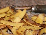 Кожура картофеля