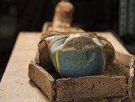 Экспедиция ЦЕИ РАН нашла мумию с золотой маской в Фаюмском оазисе