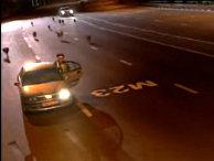 Российский полицейский едва спасся от волчьей стаи, выбежавшей на шоссе