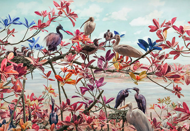 Речные птицы