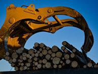 Автоматическая линия сортировки леса