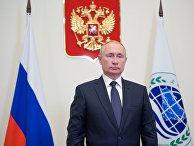 Президент РФ В. Путин по видеосвязи принял участие в заседании Совета глав государств - членов ШОС