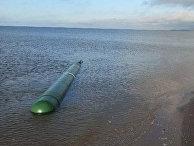 Друзья шли по берегу Белого моря в Северодвинске, и увидели ЭТО